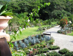 puerto vallarta nature with eco-tours at the gardens