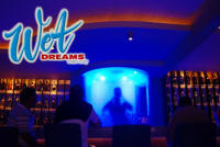 top gay strip bars mexico at wet dreams