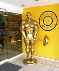 Gold's gym in the vallarta Plaza Las Glorias - now Closed