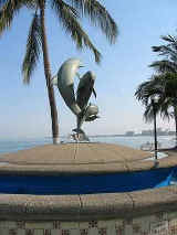 puerto vallarta malecon friendship fountain with dolphins