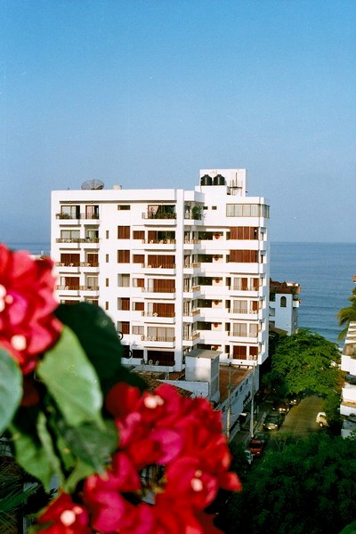 puerto vallarta abbey gay hotel