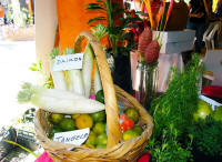 farmers market puerto vallarta things to know