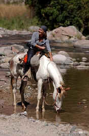 attractions horseback riding - picture thanks to Rancho el Charro